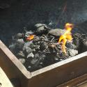 11009 Planked grilled - die Grillkohle