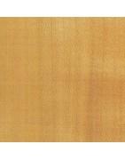 Kirschbaum (Prunus sp.)